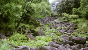 Amanokawa2